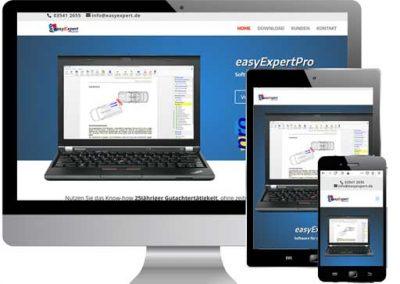 EasyExpertPro
